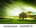 green nature | Shutterstock . vector #131048573