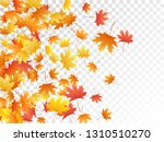 maple leaves vector  autumn... | Shutterstock .eps vector #1310510270