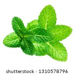 fresh mint leaf isolated on... | Shutterstock . vector #1310578796