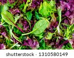 Salad Mix Leaves Background....