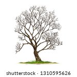 trees isolated on white... | Shutterstock .eps vector #1310595626