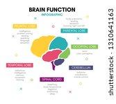 creative human brain... | Shutterstock .eps vector #1310641163