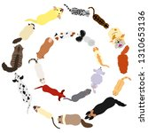 dogs and cats round frame set | Shutterstock .eps vector #1310653136
