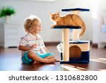 Stock photo child playing with cat at home kids and pets little boy feeding and petting cute ginger color cat 1310682800