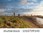 woman cycling in the dutch... | Shutterstock . vector #1310739143