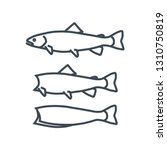 Stock vector thin line icon fish processing cutting raw fish 1310750819
