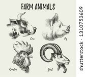 hand drawn sketch farm animals... | Shutterstock .eps vector #1310753609