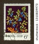 ussr stamp   circa 1982  a... | Shutterstock . vector #1310839973