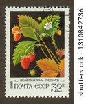 ussr stamp   circa 1982  a... | Shutterstock . vector #1310842736