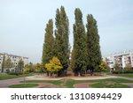 zagreb  croatia   october 25 ...   Shutterstock . vector #1310894429