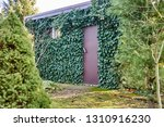 the stone walls and windows of... | Shutterstock . vector #1310916230