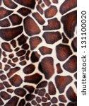 Giraffe Skin Pattern Texture
