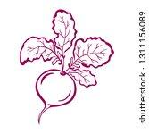 beet icon illustration isolated ... | Shutterstock .eps vector #1311156089