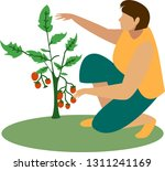 farmer woman with vegetables.... | Shutterstock .eps vector #1311241169