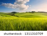 Spring Farmland   Tuscany...