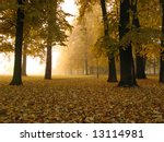 Early autumn foggy morning in city park - stock photo