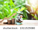 money coins saving increase to...   Shutterstock . vector #1311525080