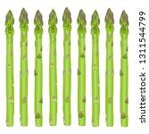 illustration of the asparagus | Shutterstock .eps vector #1311544799