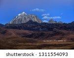 tagong prairie grassland ...   Shutterstock . vector #1311554093