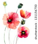 Stock photo poppy flowers watercolor illustration 131156750