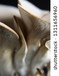 Oyster Mushroom On A Dark...