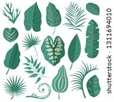 collection of green tropical... | Shutterstock .eps vector #1311694010