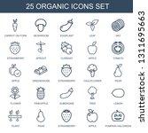organic icons. trendy 25... | Shutterstock .eps vector #1311695663