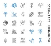 botany icons set. collection of ... | Shutterstock .eps vector #1311745820