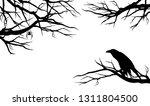 Spooky Raven Bird Among Bare...