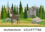 reindeer with branched horns in ... | Shutterstock .eps vector #1311977786