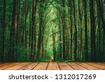 wood textured backgrounds in a... | Shutterstock . vector #1312017269