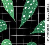 begonia maculata wightii and... | Shutterstock .eps vector #1312018586