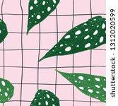 begonia maculata wightii and... | Shutterstock .eps vector #1312020599