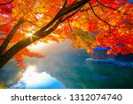 colorful autumn season in south ... | Shutterstock . vector #1312074740