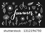 rustic and floral doodle set.... | Shutterstock .eps vector #1312196750
