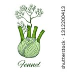 fennel hand drawn sketch. green ... | Shutterstock .eps vector #1312200413