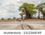 nxai pan n.p.  botswana   circa ... | Shutterstock . vector #1312368149