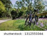 One Purple Beach Cruiser Bike...