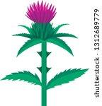 spiny plumeless thistle  ... | Shutterstock .eps vector #1312689779