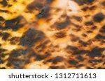 stone cut full frame background ... | Shutterstock . vector #1312711613