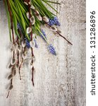 Muscari And Willow Twigs