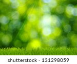 grass and defocused green... | Shutterstock . vector #131298059