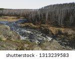 autumn mountain river stream...   Shutterstock . vector #1313239583