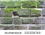 Wall In Moss  Nuremberg  Germany