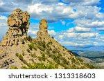 horizontal view of two spires... | Shutterstock . vector #1313318603