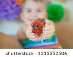 kid holding stress relief grape ...   Shutterstock . vector #1313352506