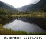 franz josef new zealand  | Shutterstock . vector #1313414960