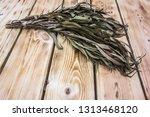 eucalyptus bath broom ... | Shutterstock . vector #1313468120