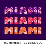 violet  pink and orange t shirt ... | Shutterstock .eps vector #1313527100