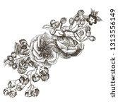 wild roses blossom branch...   Shutterstock .eps vector #1313556149